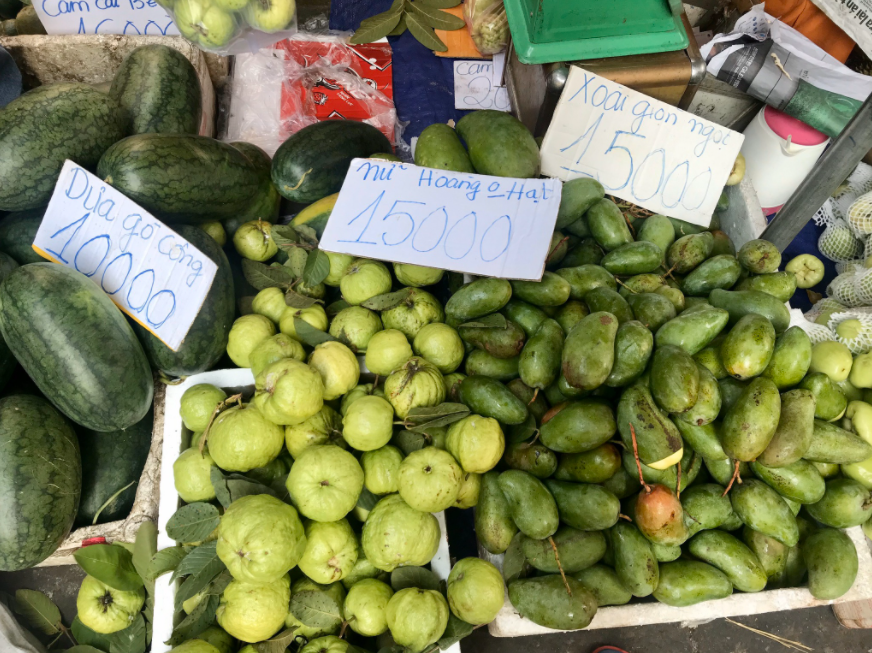 Vietnam mango exporters face stress as China licenses Cambodian mango imports