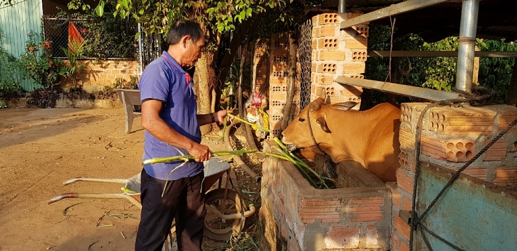 From black sheep following Fulro to respectable man in Rai village