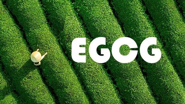 Zero Degree Green Tea: A Secret to Cooling the Body