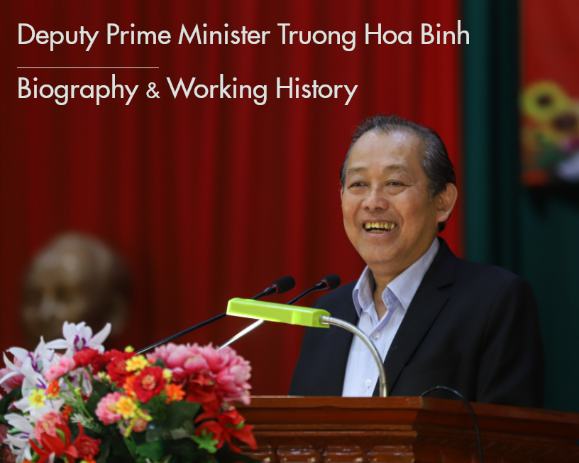 Biography of Deputy Prime Minister Truong Hoa Binh: Positons and Working History