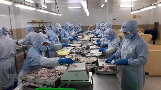 Vietnam's Export to EU Market Witnesses 15.5 percent Rise