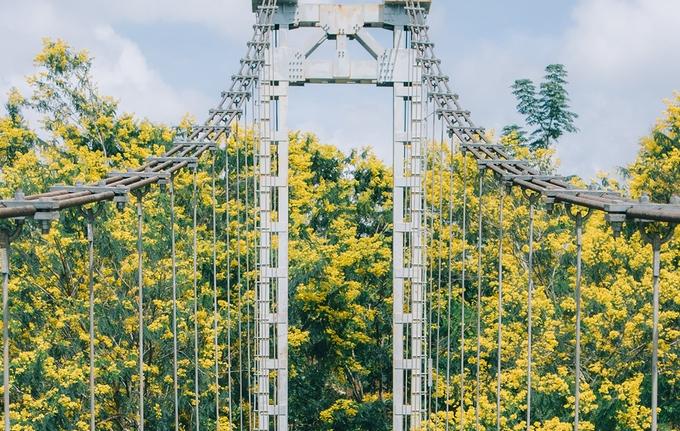 Dak Nong's Town of Golden Flowers