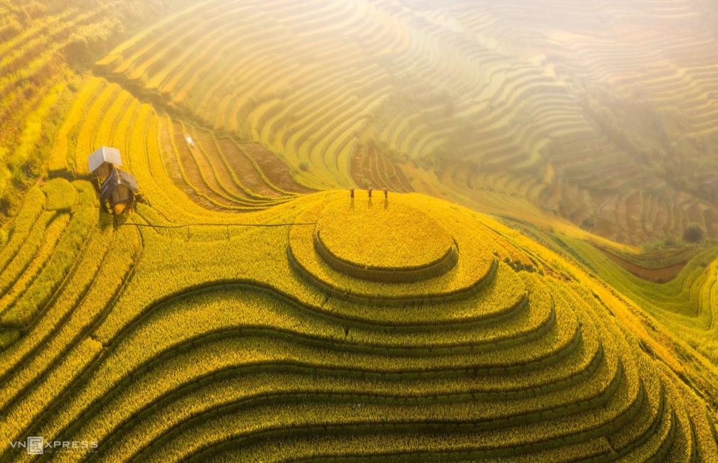 Mountainous harvest in the golden light of autumn