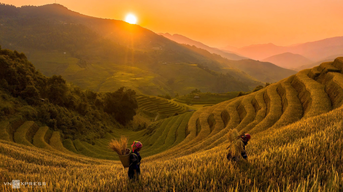 mountainous harvest in the golden light of autumn
