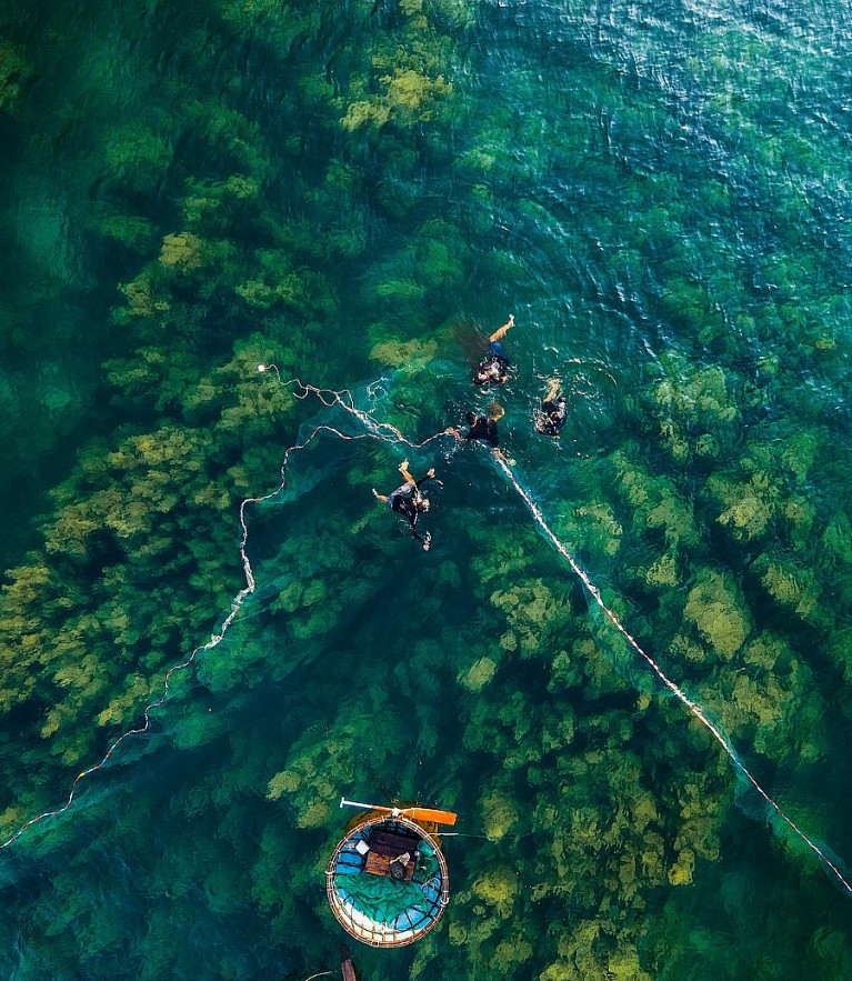Photos: Quang Ngai's Seaweed Forest Seen From Above