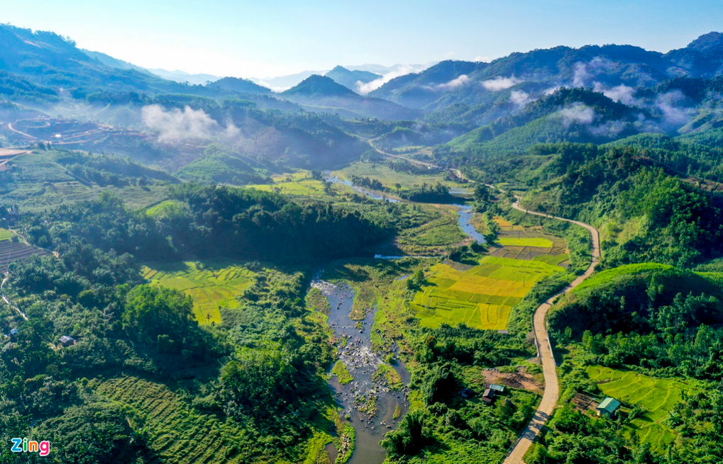 admiring the white clouds in harvest season of east truong son