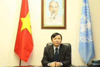Vietnam Supports Human Rights Protection and Fair Distribution of Covid Vaccine
