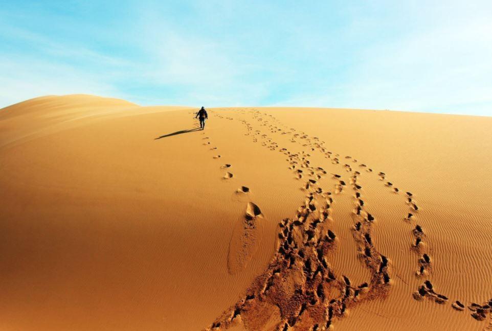 Exploring Vietnam's Miniature Sahara Desert