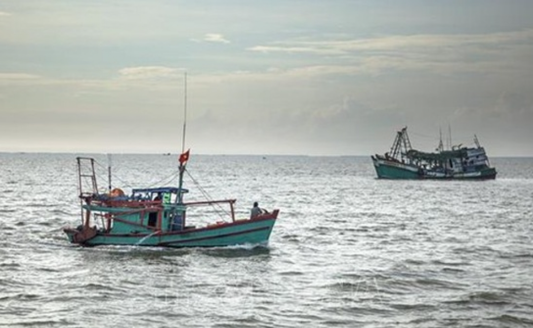 vietnam supports peaceful settlement of maritime disputes