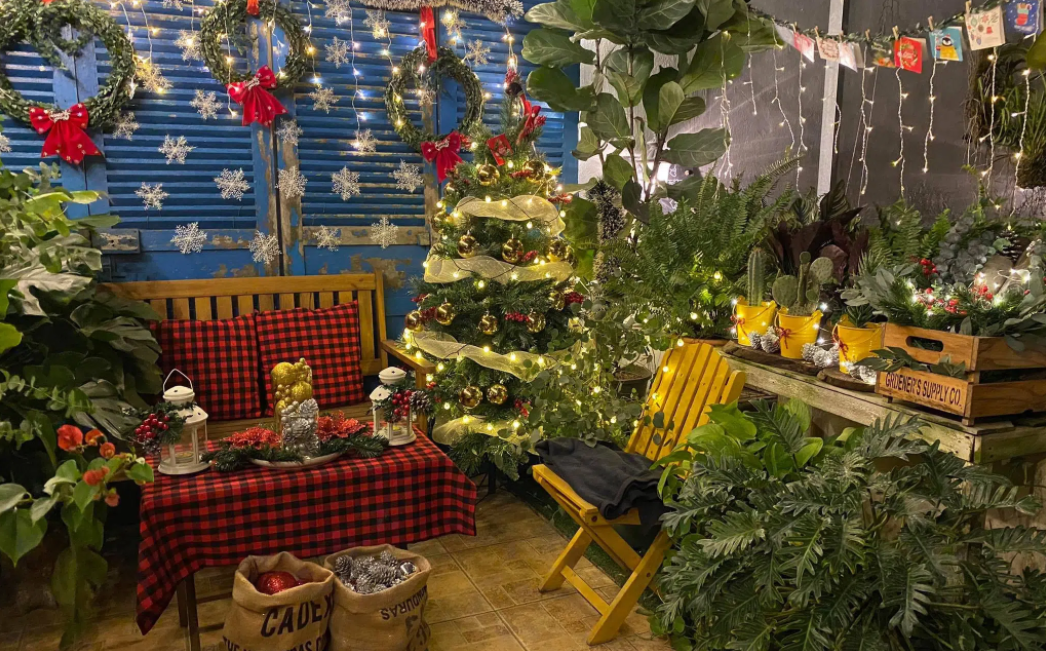 nha trang housewife turns terrace into twinkling christmas themed corner in just 2 days