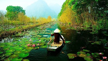 Vietnam, ROK Shares Experience Reviving Safe Tourism Post Pandemic