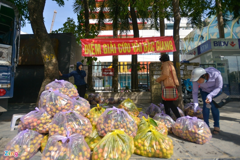 Hanoians 'rescue' Bac Giang pandemic-hit lychees