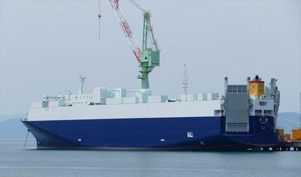 11,000-ton Japanese cargo ship sank after collision