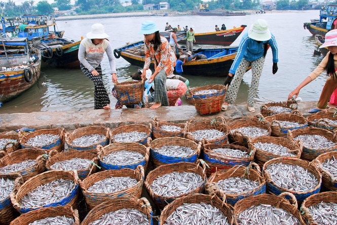 Phu Quoc fish sauce making seeks UNESCO recognition as world intangible cultural heritage