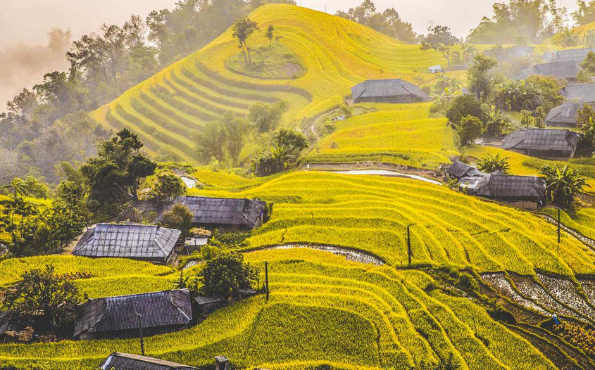 A must-try delicacy in Ha Giang province