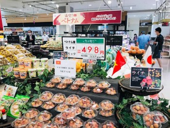 Vietnam's Agricultural Export Strengthen Despite Covid-19 Outbreaks