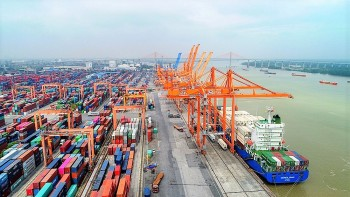 Exports, Imports Fall in August Due to Covid