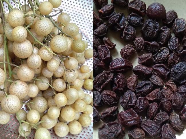 Mac Mat Fruit: the All-purpose Seasoning of the Tay Ethnic Minority Group