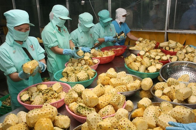Vietnamese Products Expected to Succeed in Russia