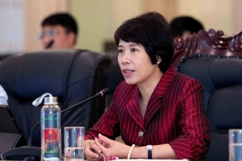 Deputy Minister of Planning & Investment: Foreign Investment Continues Despite Covid