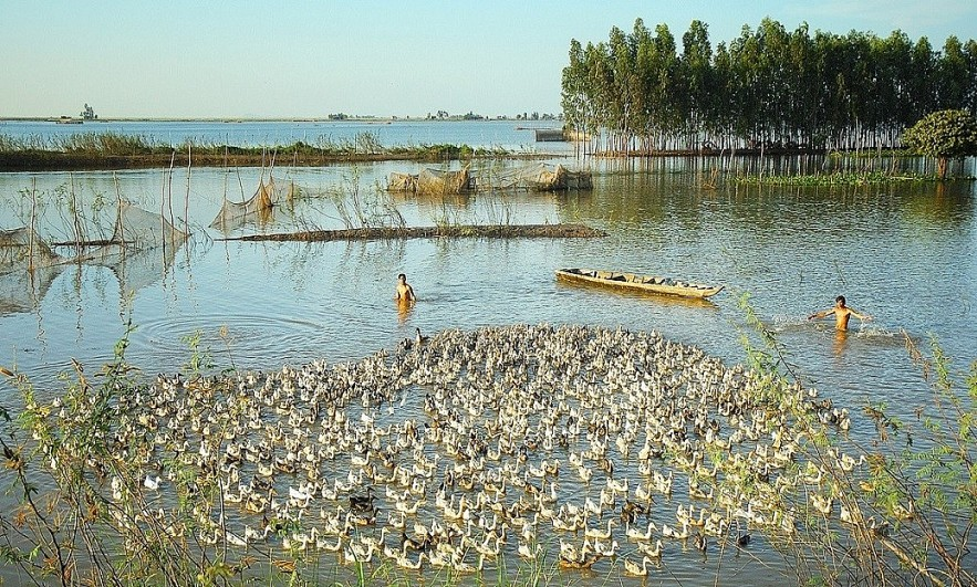 The Flood Season in An Giang Province