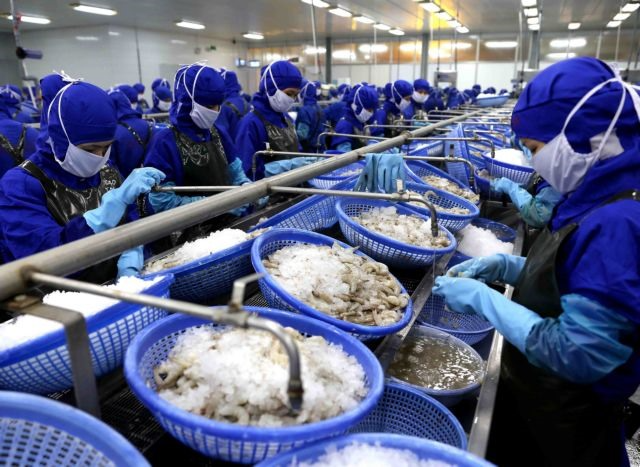Vietnam seeks to become world's lead in seafood production and exports