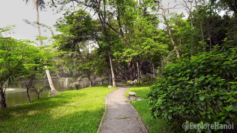 bach thao park a peaceful green heaven in the heart of hanoi