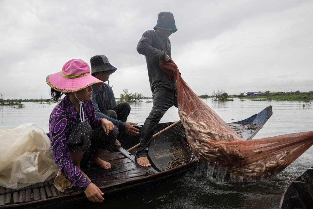 Cambodian fishermen faces a dwindle in fish stocks in Mekong Rivers