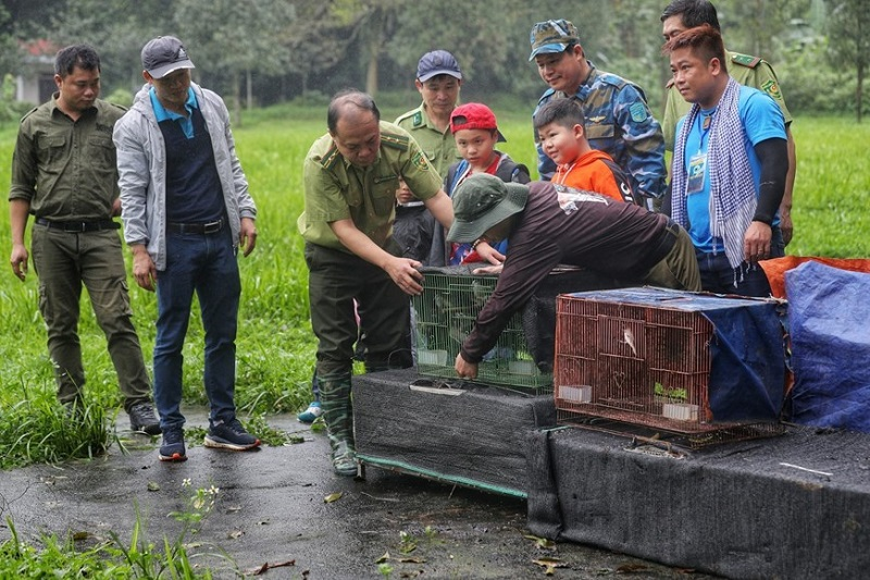 """""""Going Home"""" - Animal release debuts at Cuc Phuong National Park"""