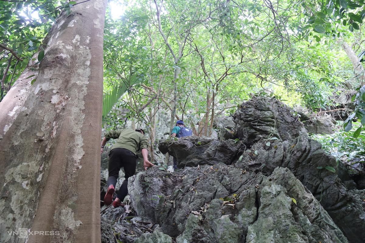 Hidden stream found in Quang Tri Cave