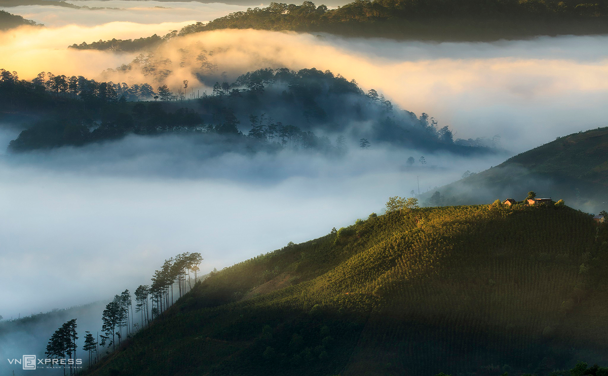 A cloud of white mist passing by Dasar Hill and the pine wood in Lac Duong District.  (Photo: VnExpress)