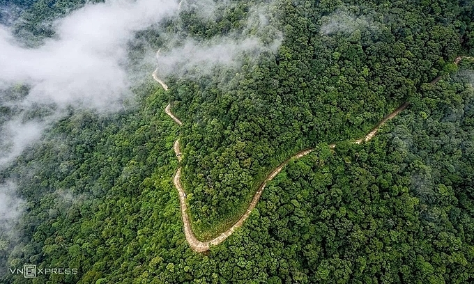 Bach Ma National Park in Thua Thien Hue Province, central Vietnam. Photo: VnExpress/Kelvin Long.