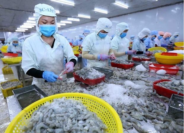Aquatic product exports forecast to reach $9.4 billion in 2021. Photo: VNA