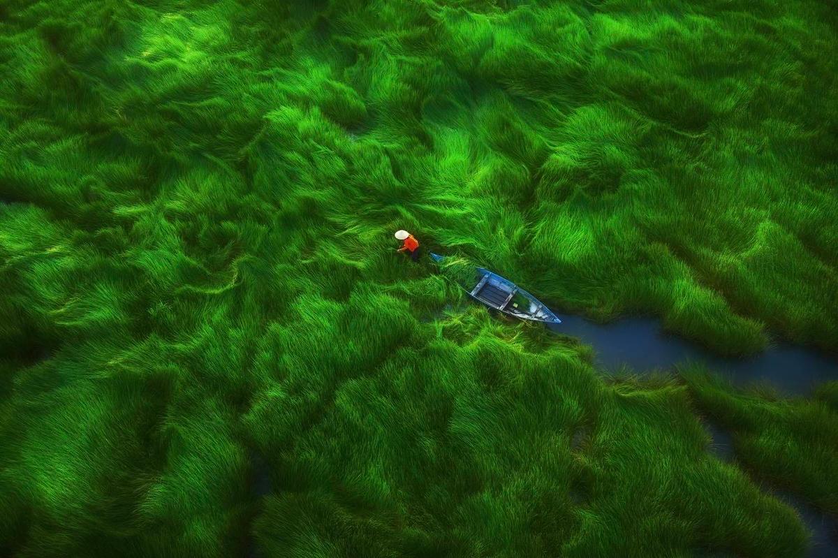 Beautiful Vietnam in the series of aerial photography winning international award