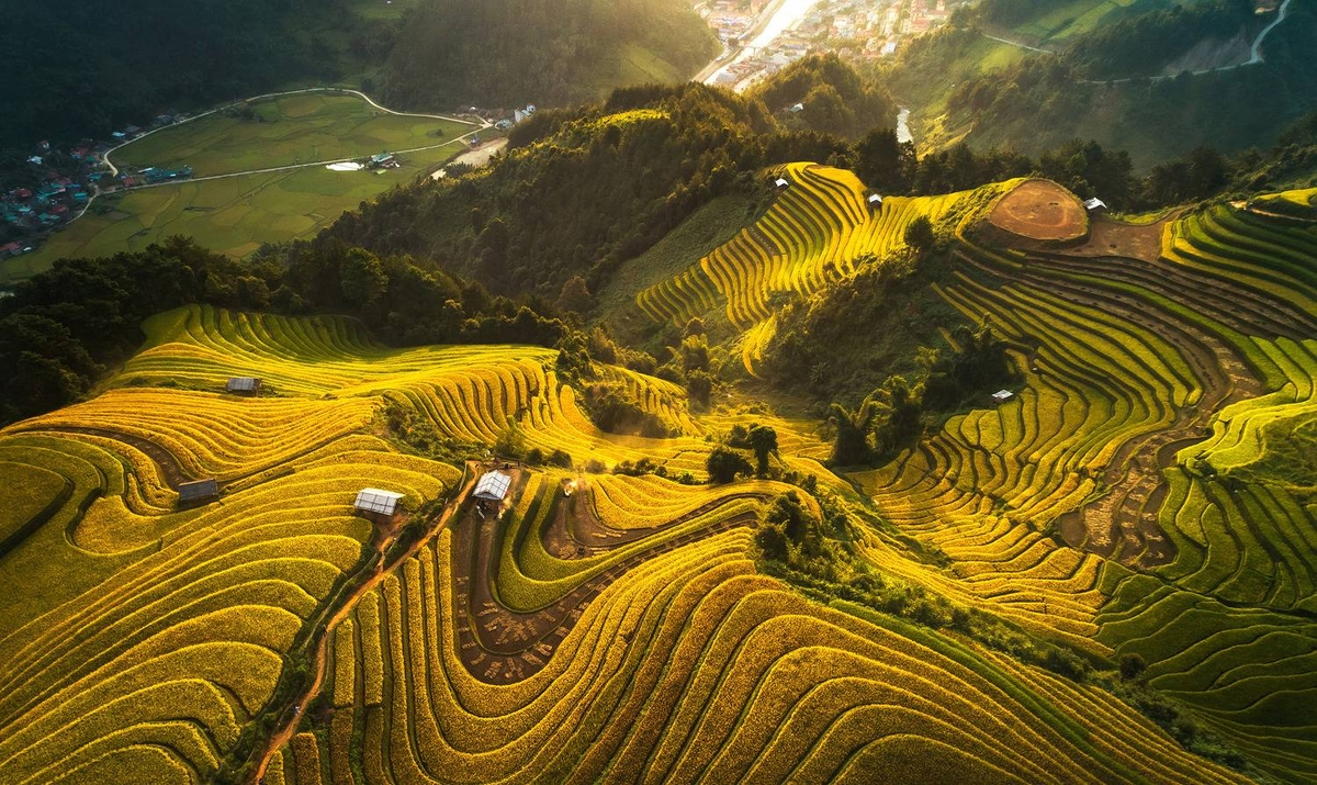 """""""Golden rice season"""" of photographer Vu Ngoc Tuan (Hanoi) captures the winding, gorgeous rice terraces in Mu Cang Chai, Yen Bai.  His other work, """"Flower nets"""" with a fishing boat casting nest off Phu Yen Province coast is one of top 100 drone photos."""