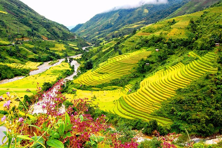 Forbes: Vietnam is one of top 5 most visited destination in Southest Asia