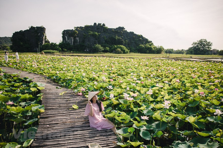 In the distance is the rocky mountain walls that create a wonderful natural and artistic beauty.  Photo: Vietnam+