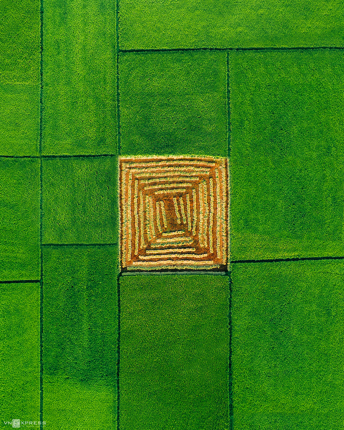 Young Photographer Captures Majestic Beauty of Vietnam Through Aerial View