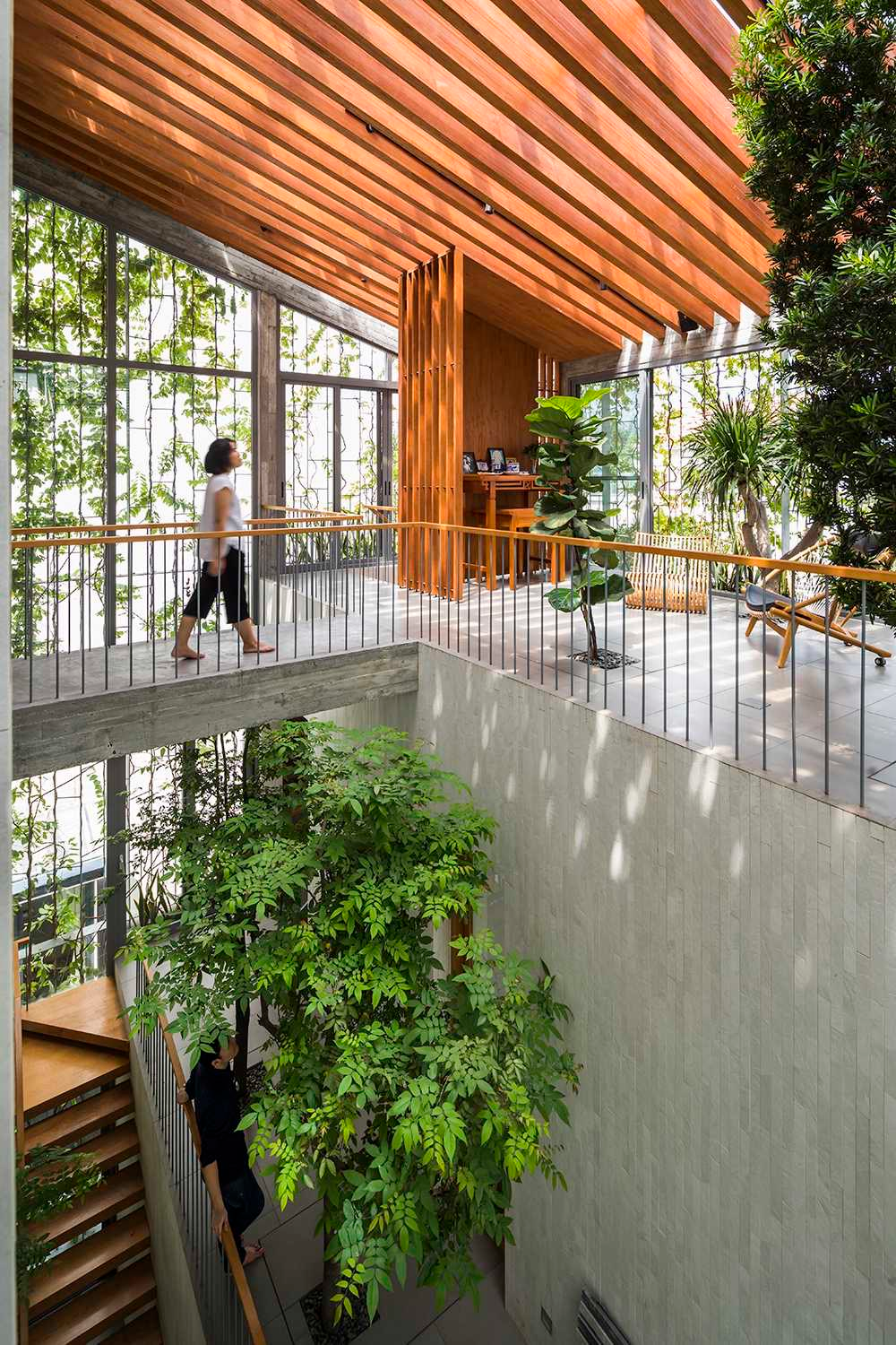 Even corridors in this house are lined with big trees. Photos courtersy of Hiroyuki Oki