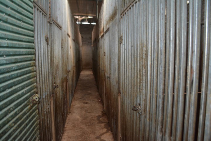 The basement where the tigers were kept. Photo courtesy of Nghe An Police.