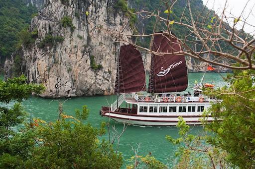 Photo: Tree Vietnam Travel