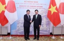 vietnam japan agree to further enhance political trust