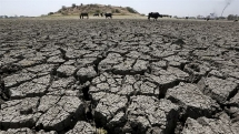 india hottest decade on record more than 1500 people killed in 2019