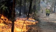 relief as rain falls over australian bushfires