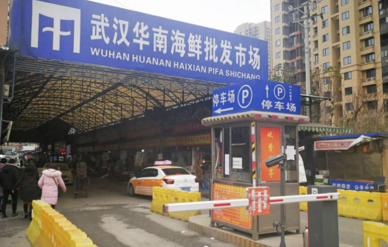 wuhan pneumonia outbreak japan confirms first case of coronavirus