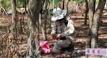 Quang Tri: Grenades near villagers' garden safely destroyed