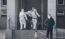 pneumonia virus spreads to beijing and shenzhen china confirms 139 new cases