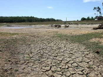 strengthening climate change mitigation capacity in ca mau