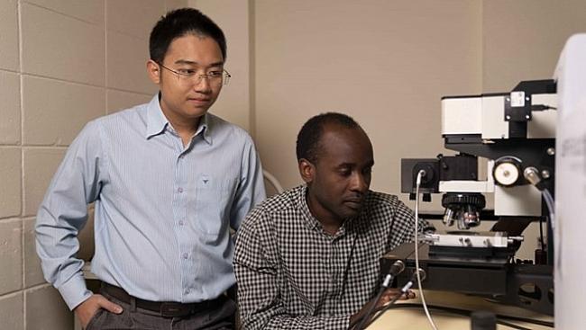 Australia grants aid for Vietnamese-led research team