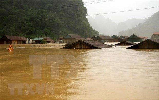 Flood affected people in Quang Ngai receive support from NGO
